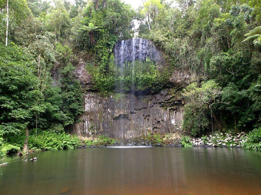 tropical-queensland-millaa-millaa-falls-daintree-rainforest