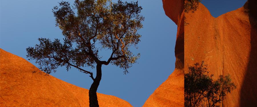 Uluru-Colors